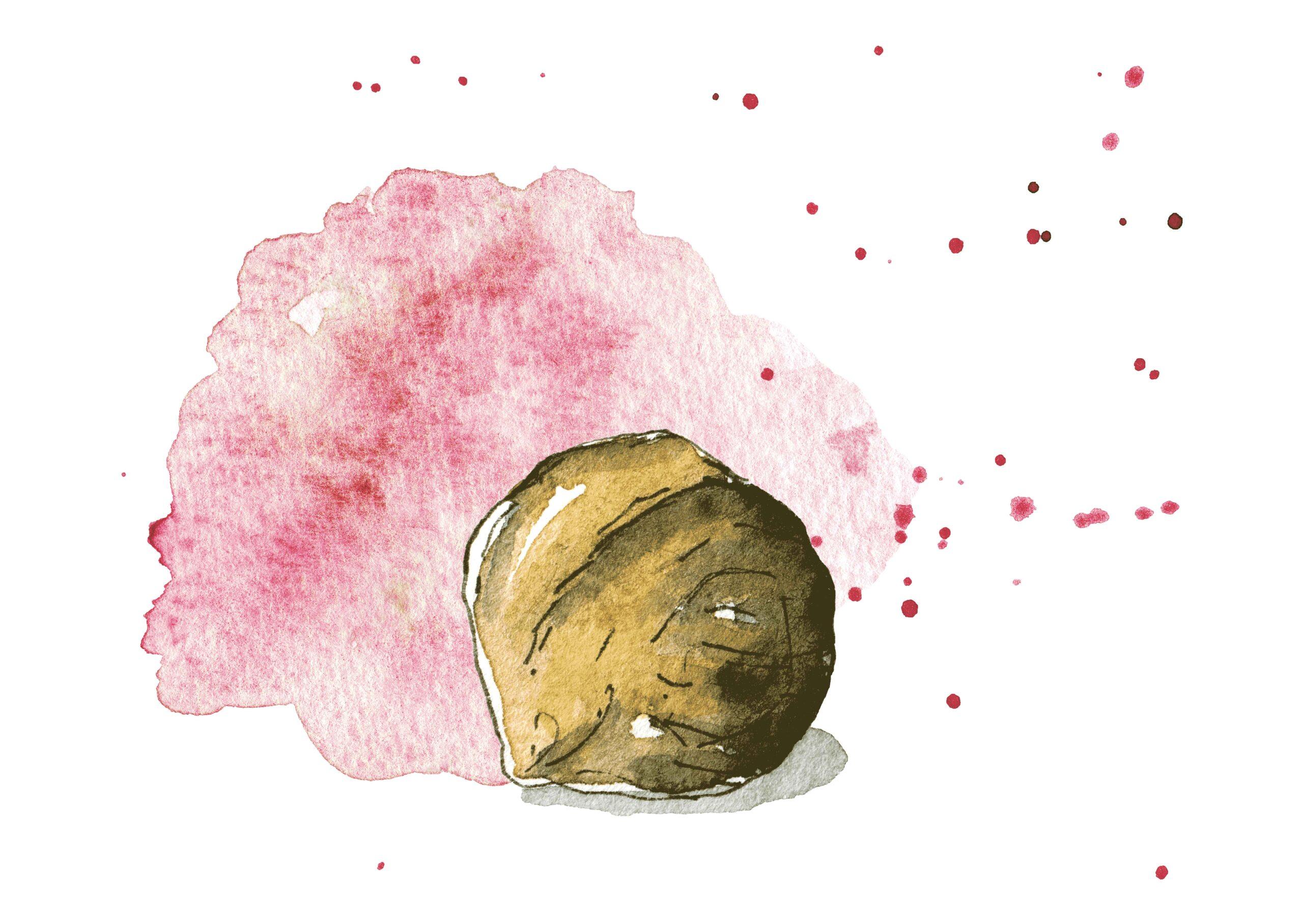 Logo illustration: The Lovely Chickpea